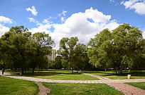 蓝天下美丽的公园