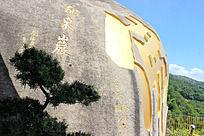 龙泉岩石雕佛字