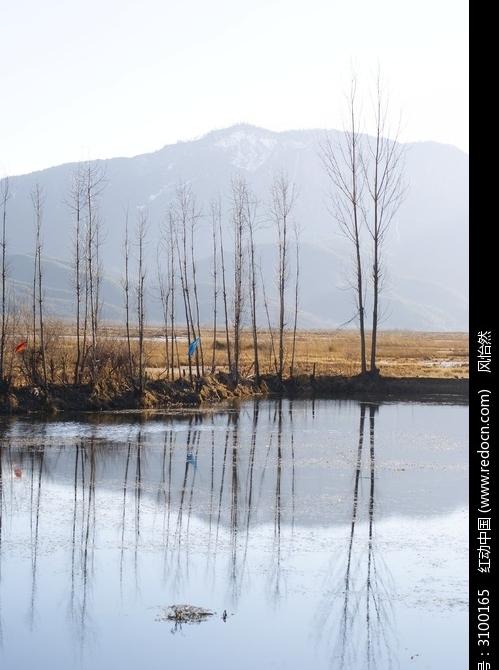 倒影在水中的远山和小树