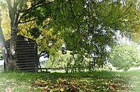 秋风中的庄园