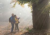 古枫树下的摄影人
