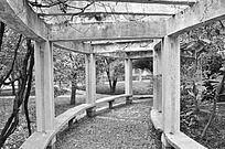 黑白摄影长沙理工大学城南学院白石休闲长廊