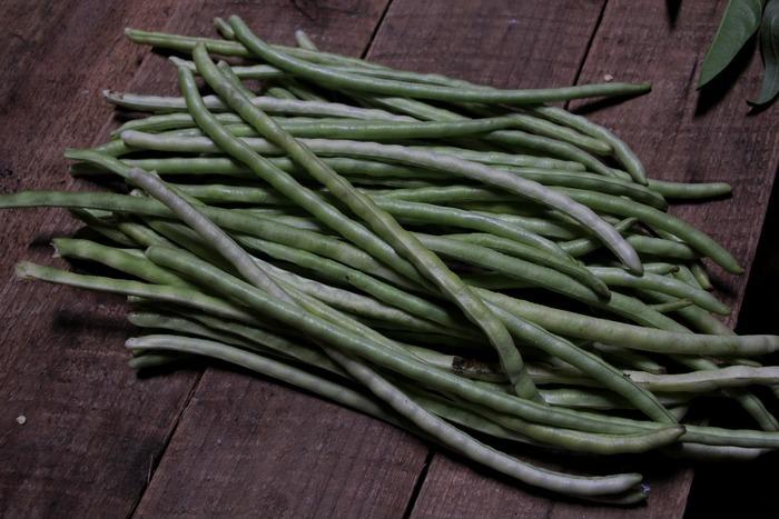 长豆图片,高清大图_水果蔬菜素材