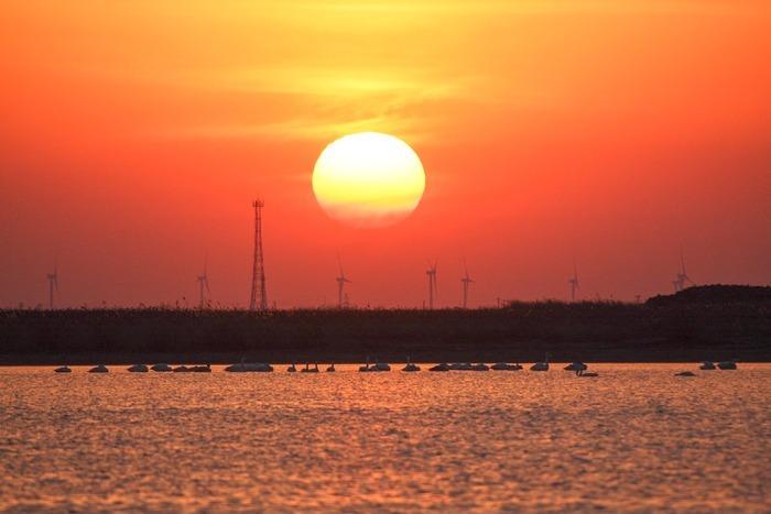 黄河故道红火的落日景色
