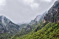 平凉云雾缭绕的山谷