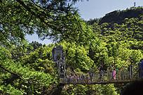 横跨山谷的大桥