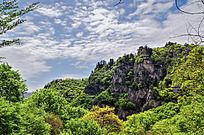 茂密树林与悬崖峭壁
