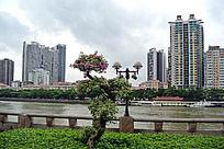 广州珠江的风光