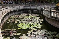 莲花池塘和石栅栏