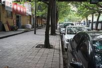 秋天的街道