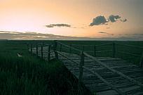 傍晚的草原风光