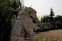 灰色的石狮子雕像