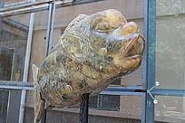 兰州创意园区人面鱼雕像