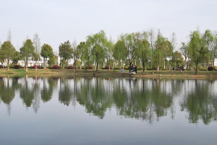 武汉工程大学静思湖高清图片下载 编号3228509 红动网