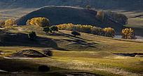 秋天的大草原风景