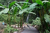 武隆三桥峡谷自然景观