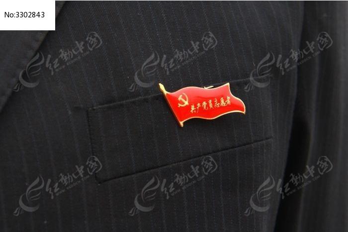 党员志愿者标志图片