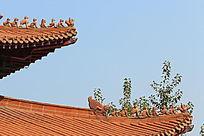 琉璃瓦顶上的龙雕