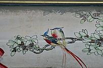 飞鸟飞禽长尾玉兰枝头小鸟