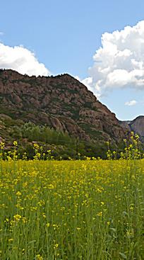 高耸 层积岩石 图片 自然风景图片