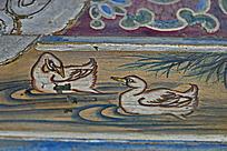 水鸟水波天鹅水草白色飞禽