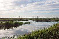湿地夕阳时刻风光