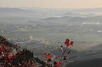 秋天的田野村庄
