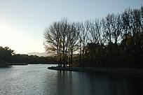 黄昏的湖边剪影