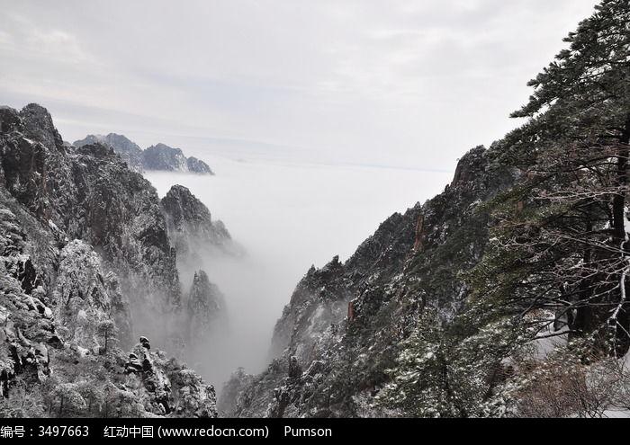 原创摄影图 自然风景 山峰山脉 雪山与雪松  请您分享: 素材描述:红