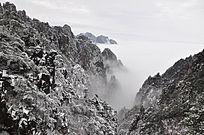 云海中的雾凇