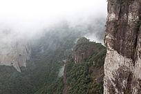 俯视峰底的丛林