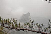 雾端的山尖
