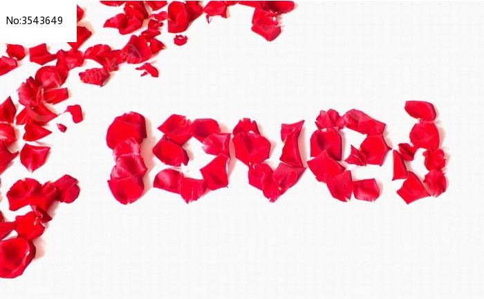 花瓣摆放的花字图型