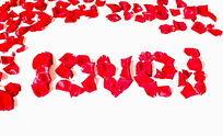 玫瑰花瓣摆放的花字图型
