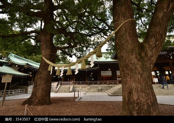 葫芦岛市龙港区双树幼儿园