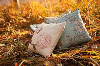 夕阳下的草地上的两个抱枕