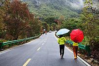 沿着公路赏秋
