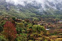 云雾下的小乡村