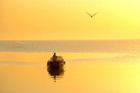 日出时刻金黄色的海面和天空以及渔船海鸥