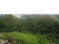 茂密原始森林