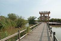 湿地栈道观景台