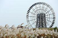 太湖边的大风车