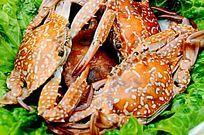 一盘美味海鲜花蟹特写图片