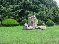 松江思贤公园的绿草地和石头