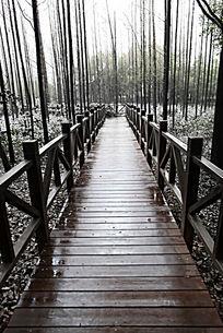 通往森林的复古木质小桥