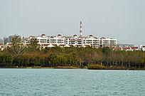 湖畔景观楼