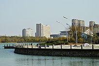 湖心岛景致