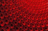 莲花座背景图案 红色