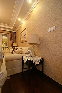 客厅  室内装饰
