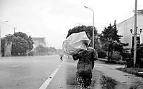 """台风来袭 街头""""众生相"""""""